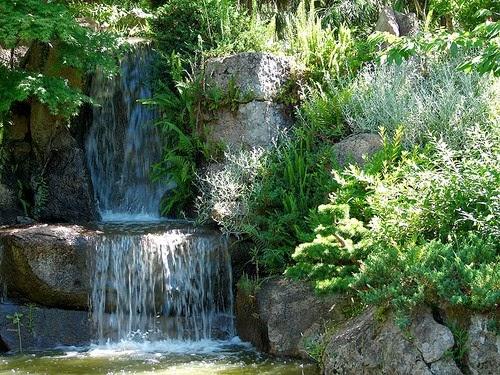 Que es un jard n japon s los muertevideanos - Fotos jardines japoneses ...