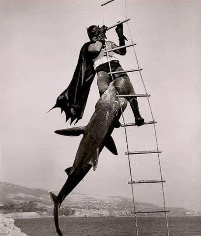 batman repelente tiburones
