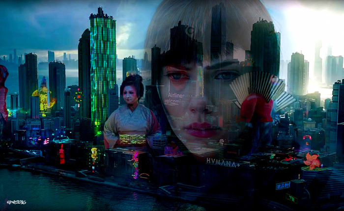 ghost_in_the_shell 2