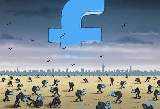 Redes sociales (17)