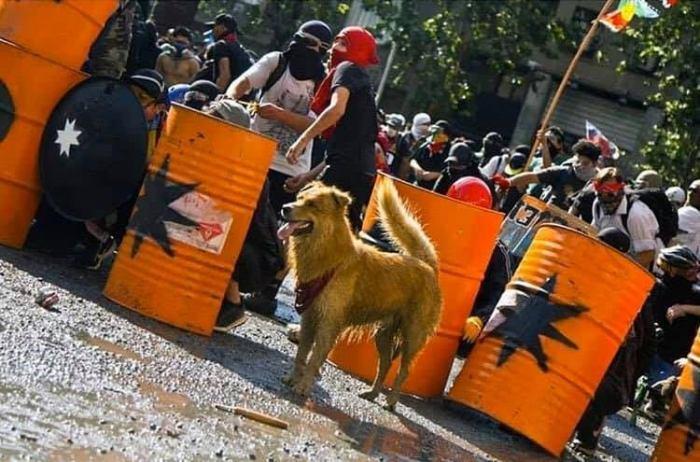 Chile en dictadura (11)