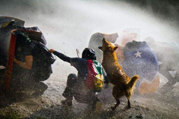 Chile en dictadura (2)
