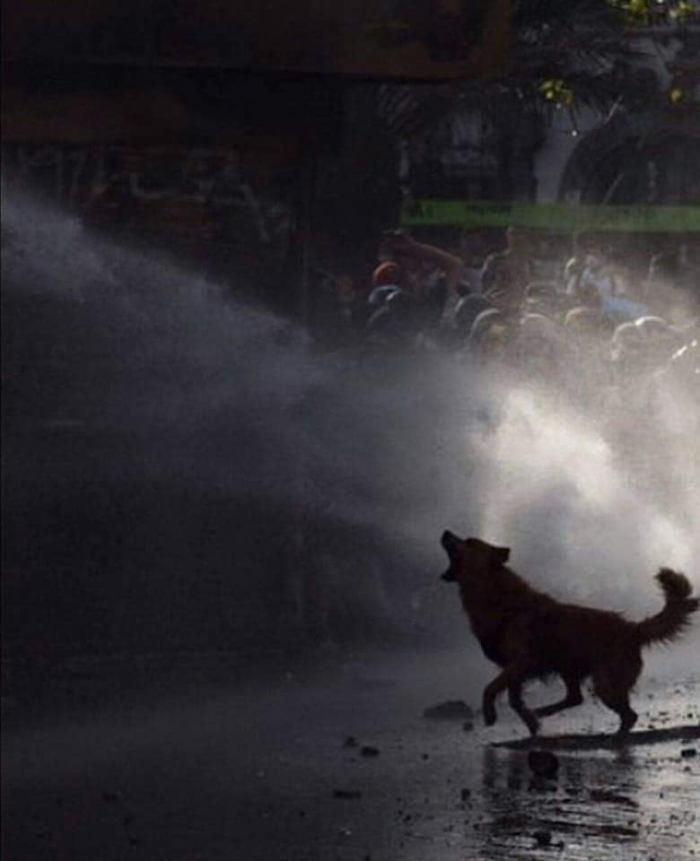 Chile en dictadura (4)