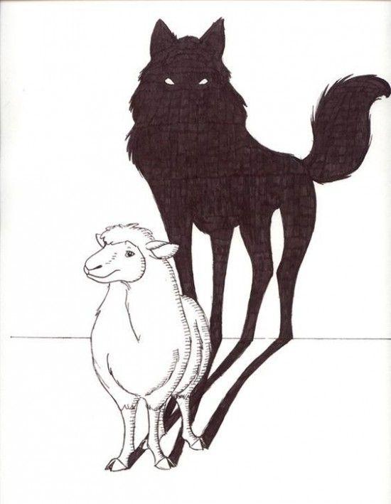 lobo y cordero 2