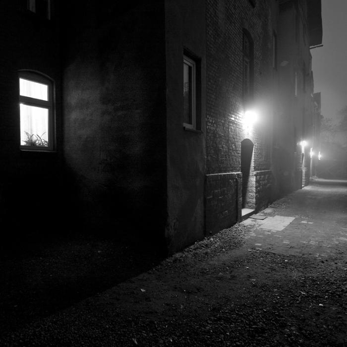 foggy_by_fifek2000